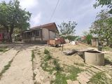 Se vinde casa in Cojușna