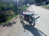 Alpha Moto 110cc