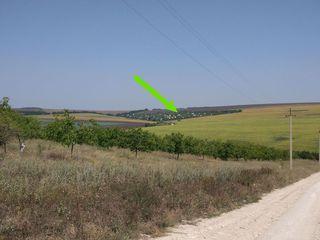 Masiv de vile Berpalox, situat după sat. Pașcani, r-l Criuleni, 25 km din Chișinău. Fîntînă.