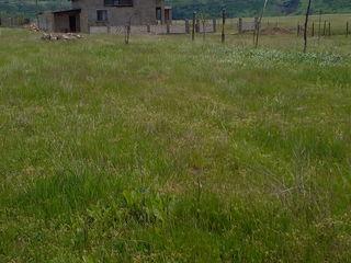 Terenu este in satul molovata veche satul este amenanjat pe malul nistrului este un sat frumos