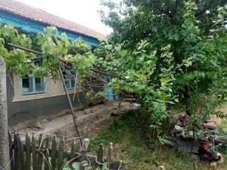 Дом в Юрьевке