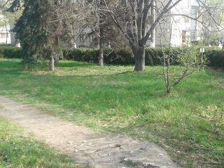 se vinde teren pentru construcții comerciale în centrul orașului Glodeni