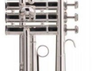 Trompetă muzicală Classic Cantabile tr-40s bb-trompete. Livrare în toată Moldova. Plata la primire