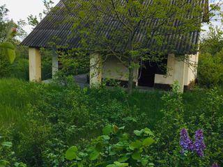 Дача у Днестра с панорамным видом, 16.4 соток