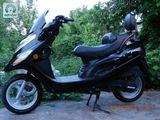 Viper f1...f50