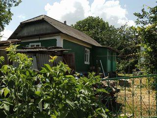 Продается 2 дома в районе дандюшан + 25 соток земли
