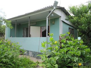 Продаем дом-дачу 30м2 на 9 соток земли, в дачном кооперативе,рядом с селом Оницканы в 300м.от трассы