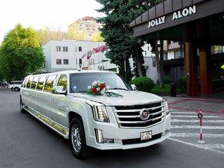 """Большой выбор лимузинов """"Elitelimo"""". 45 евро Супер цены!"""