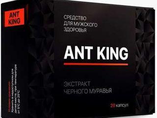 Ant King комплекс для потенции. Промо цена!