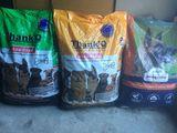 Hrana uscata pentru căței, livrare gratuita, calitate, asortiment