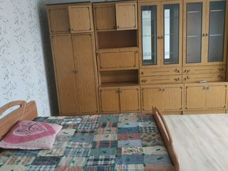 Chirie apartament