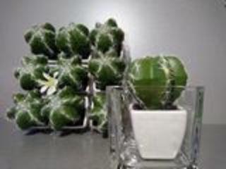 Квадратные стеклянные вазы
