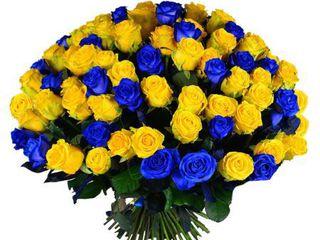 101 trandafiri 30-90cm cu livrare gratuita in Chisinau