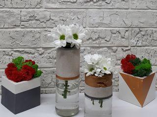 Mini ghiveci,vaze decorative p/u casa si birou.Cu muschi stabilizati.Вазоны,кашпо.Гипс,бетон.
