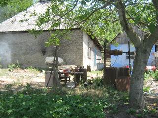 casa linga nistru  in satul pohrebea