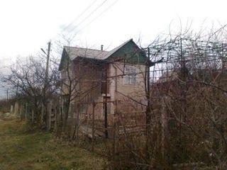 Срочно 5500е Дом дача участок 6 соток (в 3 км от Крикова) Пашканы,Pascani