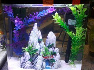 Бесплатная доставка - аквариумы по привлекательным ценам
