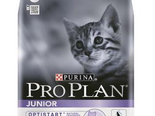 Корма для кошек pro plan компании purina.