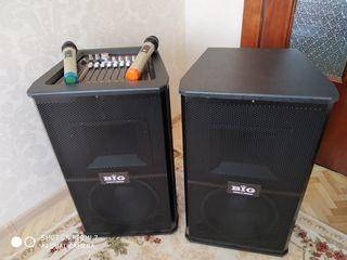 Profesional audio sistem cu blueetooth ,si 2 microfoane la pret de 5200 lei ! Cu puterea de 700 W