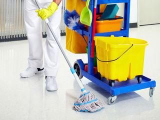 Servicii de curatenie spalare geamuri curatare chimica la domiciliu spalarea fatadelor