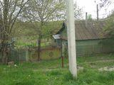 Se vânde casă în satul Bulboaca, 25 de sote, pomii fructiferi și viță de vie