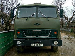 Maz 5549 cельхо-самосвал