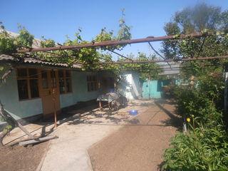 Casa pe pamint, satul Bujor
