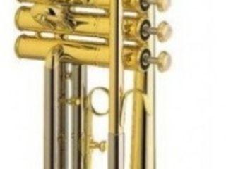 Trompetă muzicală Besson BE 110-C-1-0. Livrare în toată Moldova. Plata la primire