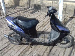 Suzuki 11