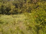 Teren linga Chisinau-12ari-6000€.Pentru construcție sau destinație agricolă-ori scimb....