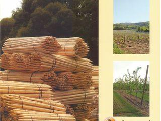 Деревянные столбики шпалерные для садов и виноградников