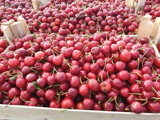 Cumpăr cirese