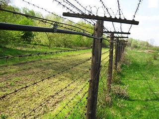 Garduri electrice,pentru securitate