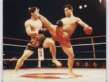Кунг-Фу Саньда ( san shou Kung-Fu) китайский кикбоксинг и борьба