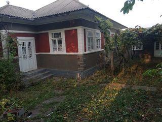 Продам дом в селе Белявинцы, возле центральной трассы