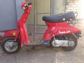 Suzuki Mulan