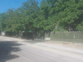 Se vinde urgent căsa în satul cajba 9,km de la glodeni