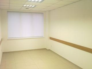 Офис в центре г. Комрат. Аренда офиса. Сдаю в аренду.