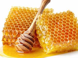 Cumparam miere de albini  la cele mai avantajoase conditii / покупаем мед на самых выгодных условиях