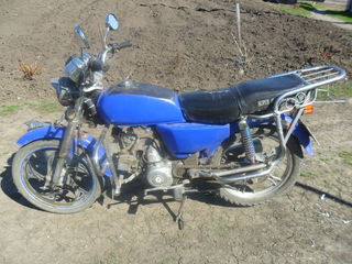 Viper sabur 110cc