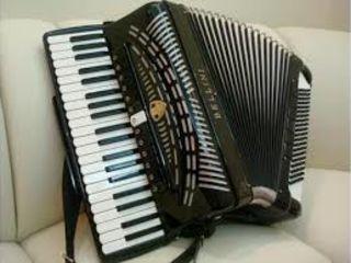 Lectii particulare de acordeon