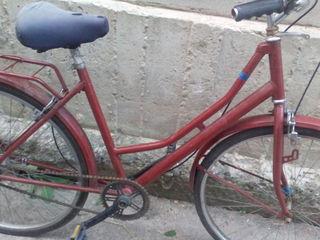 Vand bicicleta!