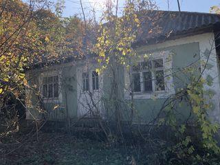 Casa la Cosauti, pe malul Nistrului
