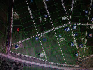 Budesti 2 terenuri de 10,8 sote fiecare,vind sau schimb!1900 euro/arul!!!