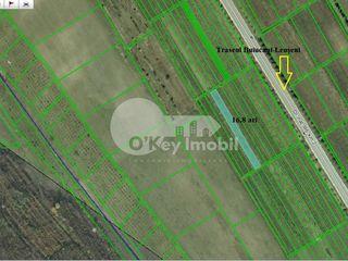 Teren pentru construcții comerciale, 16 ari, traseul R6: Poltava Buiucani 13200 €