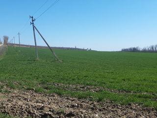 3,84 ha teren agricol