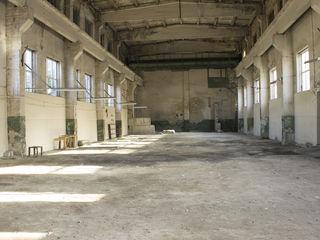 Сдаю в аренду помещния под склад  560 кв 3 евро /м2 мuncești