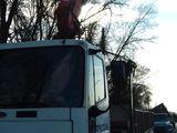 Manipulator puterea bratului la 4 metri -4 tone .la 8 metri -2 tone