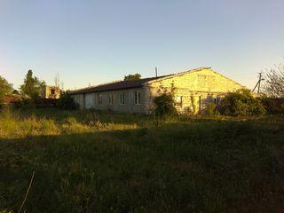 Se vinde o încăpere de tip casă și depozit cu beci mare. Și 6 cote de pământ în același teren.