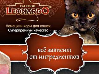 """влажный корм для Кошек.. """" Leonardo """" ( 0.085 кг ) - 22 лея"""